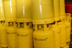 TECHNOGAS-PETROCAMGAS-4